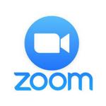 Zoom Hamilton New Zealand